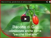 Un video informativo sulle bacche di goji