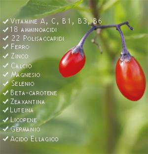 Nutrienti delle bacche di goji